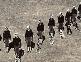 WWII K-9 Soldiers and dogs in V-Formation at Fort Robinson